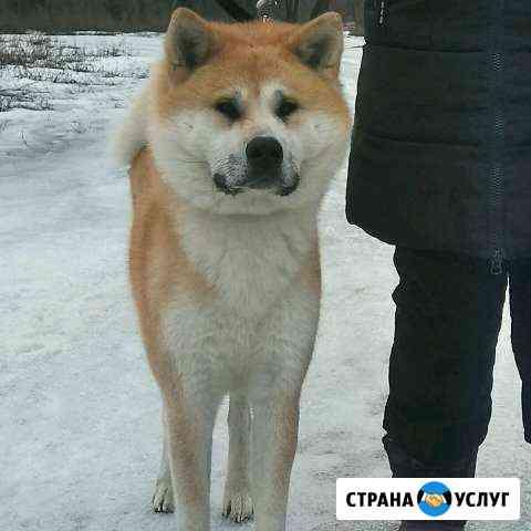 Вязка Волжский