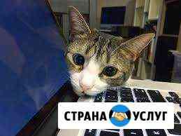 Презентации, видеомонтаж, работа с текстом Ульяновск