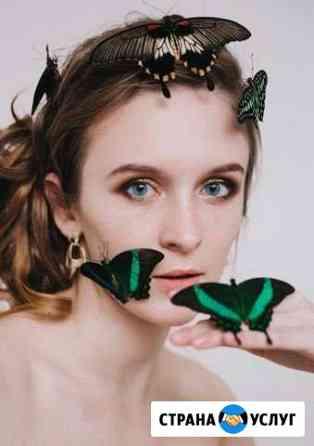 Салют из живых бабочек, фотосесси с бабочками Белгород
