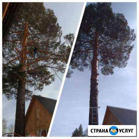 Спил деревьев - благоустройство Ангарск