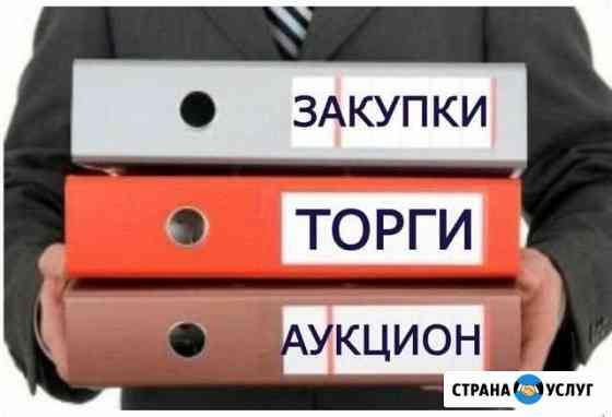 Тендерные специалисты (все виды торгов) Талинка