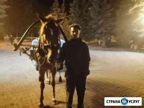 Катание на лошади день рождения Курск