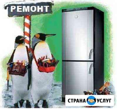 Ремонт холодильников Гороховец