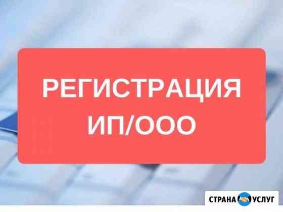 Регистрация ооо. Регистрация ип Мурманск