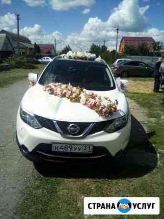 Авто для свадьбы Алексеевка Белгородской области