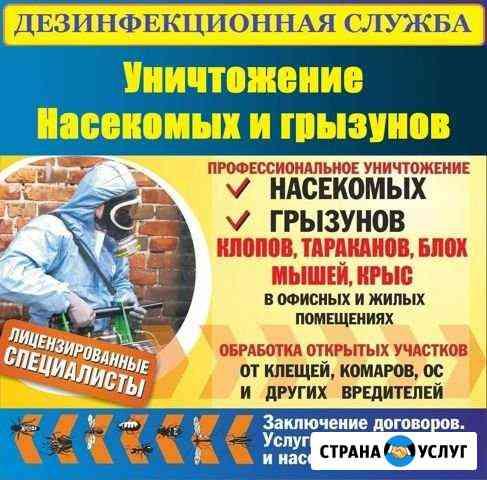 Уничтожение вредных насекомых Балашов