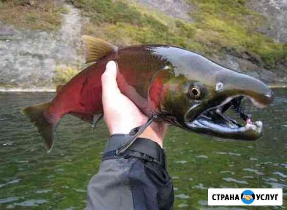 Сплав с рыбалкой на Камчатке Петропавловск-Камчатский