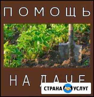 Помощь на даче Омск