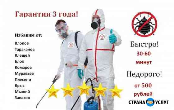 Уничтожение тараканов, клопов, клещей, насекомых Новочебоксарск