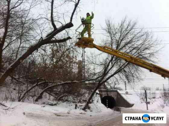 Спил и обрезка деревьев Иваново