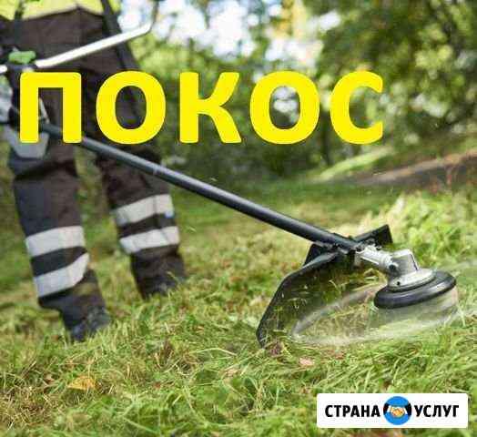 Покос травы и бурьяна Калининград