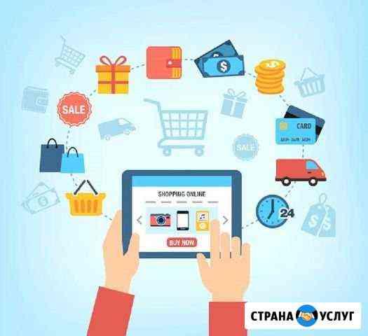 Прибыльный интернет-магазин Грозный