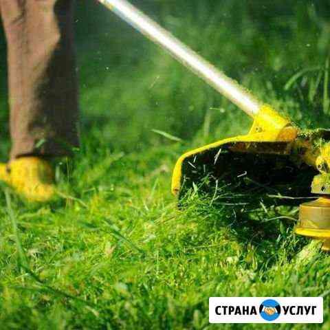 Покос травы Тейково