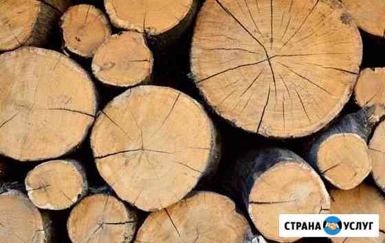 Дубовые дрова Павловка