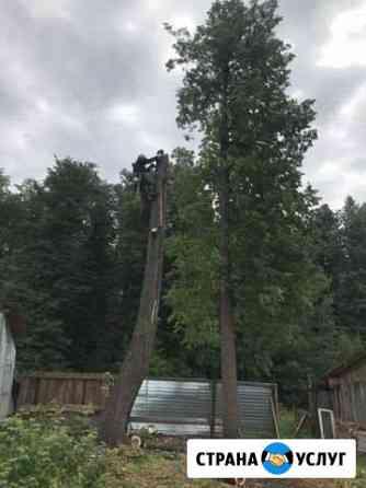 Удаление аварийных деревьев Кунгур