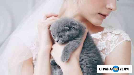 Свадебный фотограф. Фотограф Красноярск Красноярск