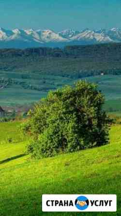 Скошу траву Ульяновск