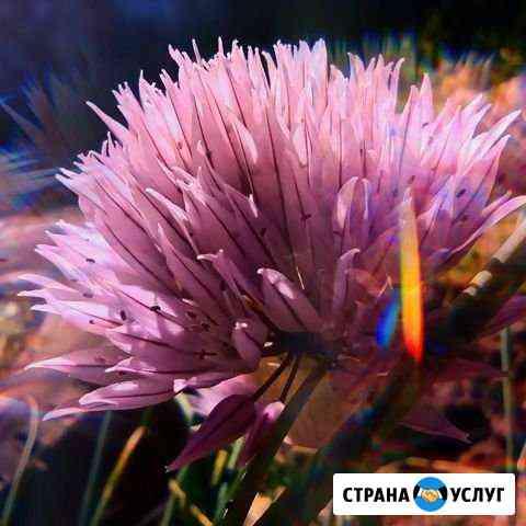 Обработка фото Новосибирск