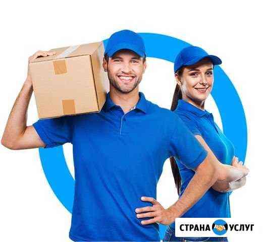 Доставка продуктов,медикаментов,документов и проче Валуйки