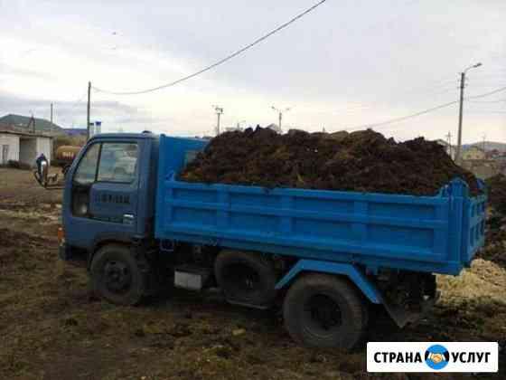 Перевозка любых сыпучих грузов и другие услуги по Елизово