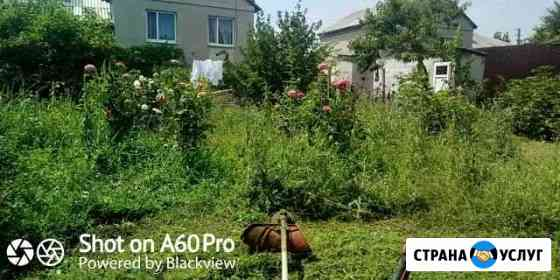 Покос травы,уборка,вспашка мотоблоком,удобрение Симферополь