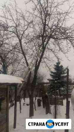 Спил деревьев, стрижка кустов Владимир