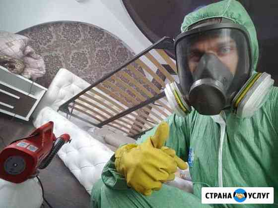 Уничтожение тараканов, клопов, клещей, дезинфекция Ульяновск