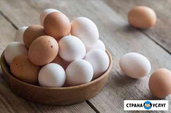 Яйца куриные домашние с бесплатной доставкой Черкесск