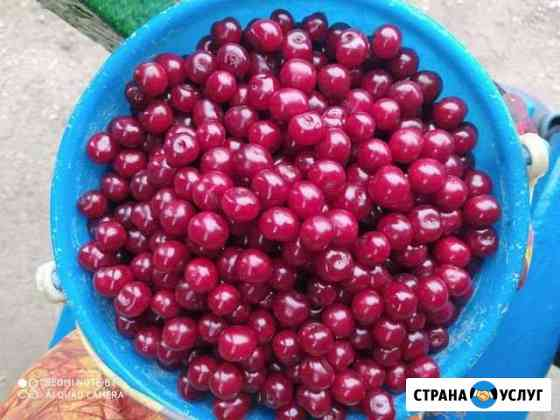 Доставка продуктов Октябрьский