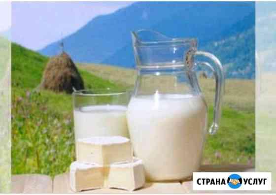 Молоко, творог, сметана. домашние Ханская