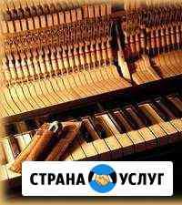 Настройщик пианино Нижний Новгород