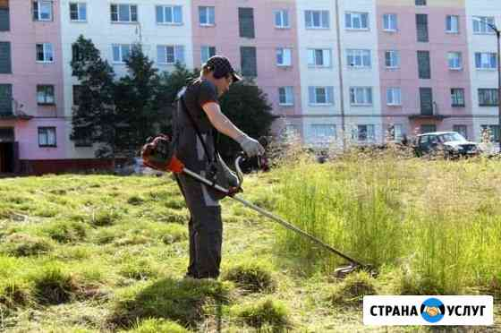 Покос травы Омск