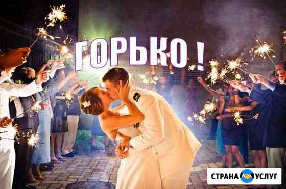 Ведущий свадьбы(тамада) и диджей в Рязани Рязань