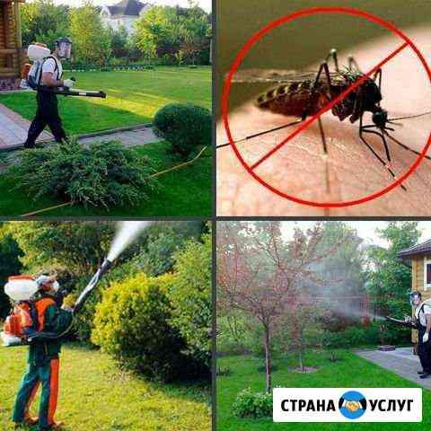 Дератизация дезинсекция Когалым