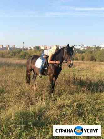 Катание на лошадях и фотоссесии Калуга