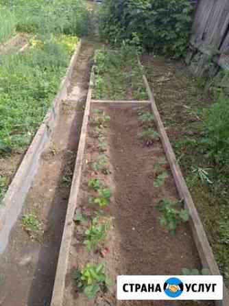 Прополка огорода Абакан