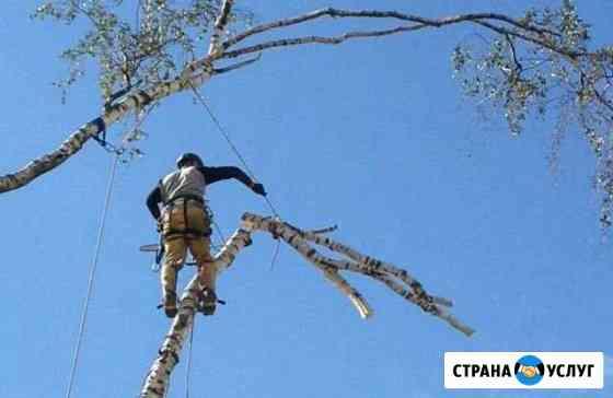 Спил и кронирование деревьев, ландшафтный дизайн Омск