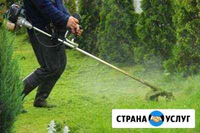Покос травы Великий Новгород