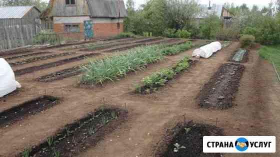 Овощеводство на узких грядках Новый