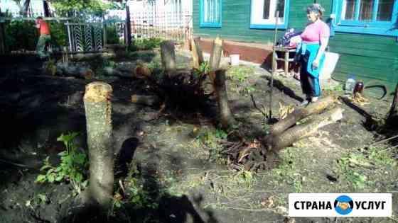 Уборка участка, спил и выкорчевка деревьев Ульяновск