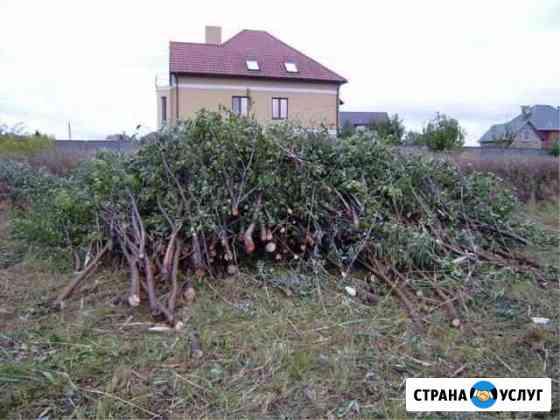 Спил деревьев любой сложности,насаждений Красноярск