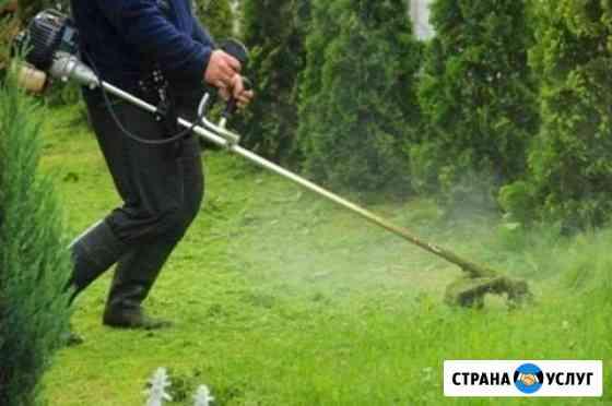 Покос травы кустарников Смоленск