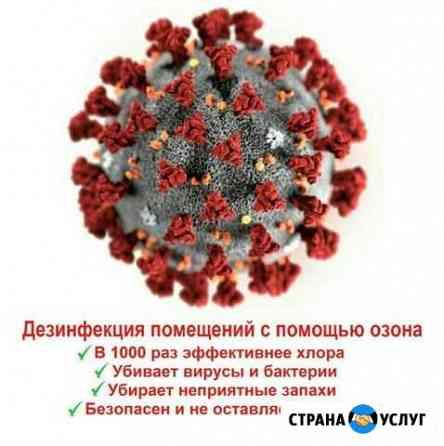 Противовирусная Дезинфекция, Озонирование Хабаровск