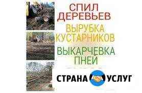 Спил дерева любой сложности расчиска участников Пенза