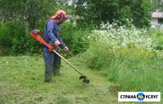 Покос травы,уборка территории,спил деревьев Гиагинская