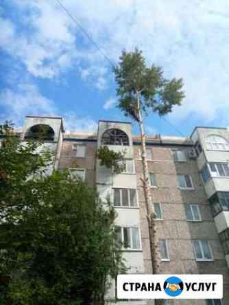 Спил дерева. Валка деревьев. Спилить дерево Томск Томск