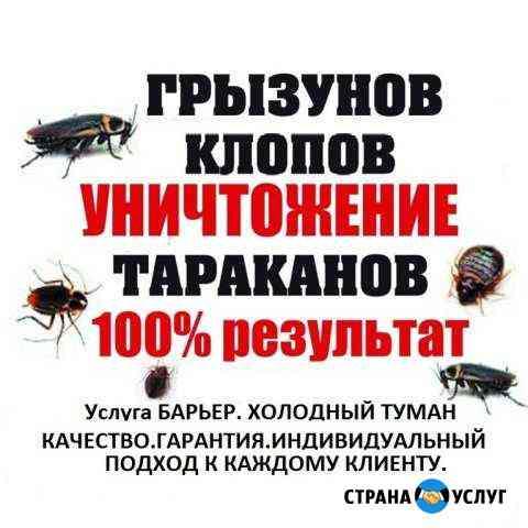 Уничтожение- травля тараканов, клопов Ангарск
