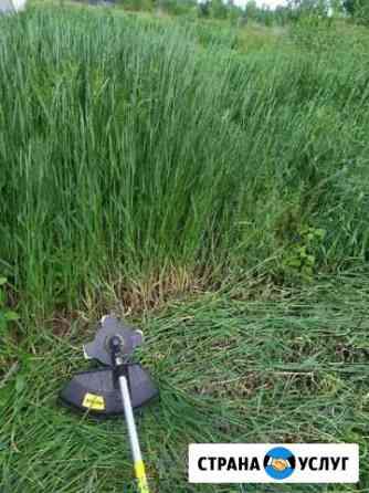 Покос травы, спиливание деревьев Воронеж