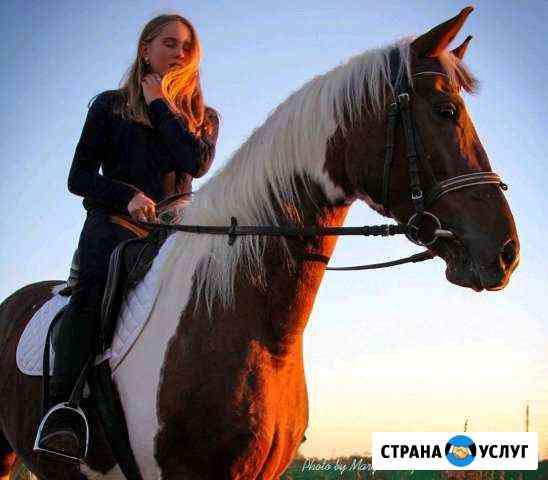 Катание на лошадях. Обучение верховой езде Конюшня Обнинск