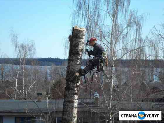 Удаление деревьев,пней и веток Валдай